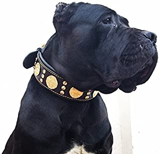 Bestia Maximus genuine leather dog collar, Large breeds, cane corso, Rottweiler, Boxer, Bullmastiff, Dogo, Quality dog collar, 100% leather, studded, L- XXL size, 2.5 inch wide. padded. Made in Europe
