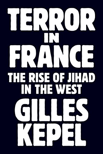 Image of Terror in France: The Rise of Jihad in the West (Princeton Studies in Muslim Politics, 64)