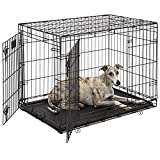Dog laying in a large metal crate