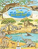 Mein erstes Wimmelbuch – Tiere aus aller Welt