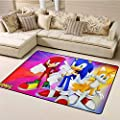 Customize Door Mats for Home Mat,Sonic The Hedgehog for Game Safe Area W47xL71 inch