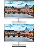 HP EliteDisplay E223 21.5 Inch IPS LED Backlit Monitor 2-Pack, FHD 1920 x 1080 (1FH45A8#ABA)