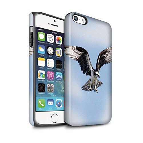STUFF4 Matte Antiurto Custodia/Cover/Caso/Cassa del Telefono per Apple iPhone 5/5S / Falco Pescatore / Uccello Rapace disegno