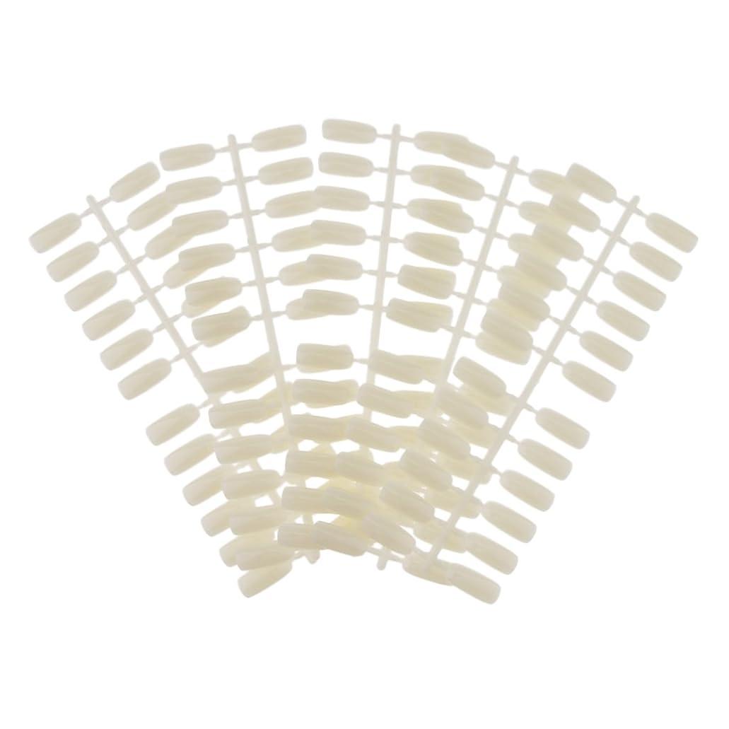 リーフレット修羅場織るHomyl ネイルアート ネイルカラーカード ネイルカラーディスプレイ ネイルチップ付き DIY 120カラースロット ネイルチップ付き 2タイプ選べる - #1