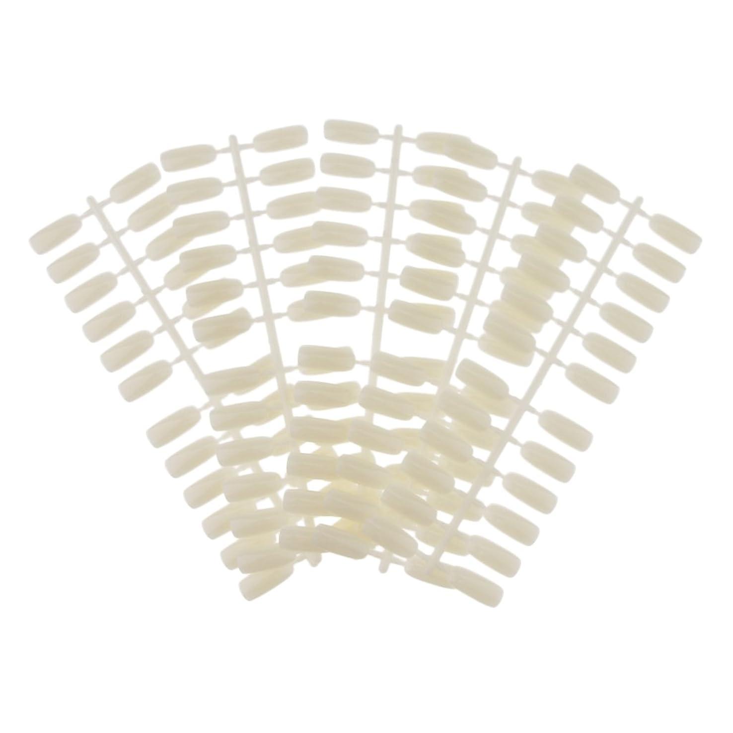 免疫宮殿叫ぶHomyl ネイルアート ネイルカラーカード ネイルカラーディスプレイ ネイルチップ付き DIY 120カラースロット ネイルチップ付き 2タイプ選べる - #1