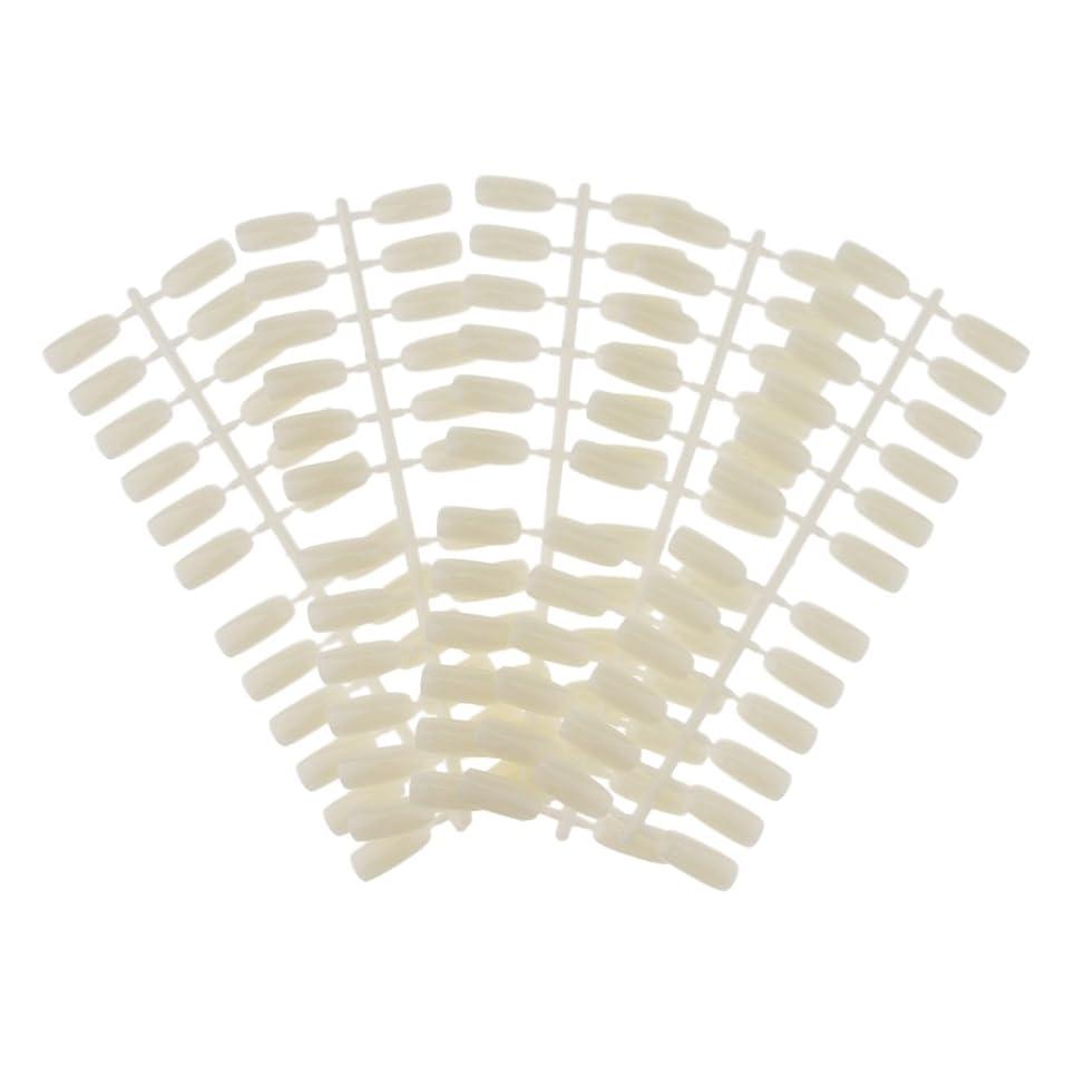 書誌事業内容急勾配のHomyl ネイルアート ネイルカラーカード ネイルカラーディスプレイ ネイルチップ付き DIY 120カラースロット ネイルチップ付き 2タイプ選べる - #1