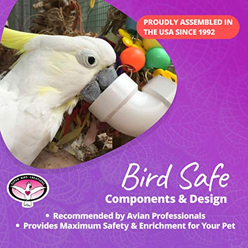 Super Bird Creations PVC Forager Toy for Birds