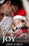 Bundle of Joy: A Christmas Single Dad Secret Baby Romance (Big Apple Love Book 4) (English Edition)