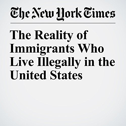 The Reality of Immigrants Who Live Illegally in the United States copertina