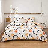 Peaches Comforter Set Fruit Comforter Peaches and Red Stripes Reversible Down Alternative Comforter Soft Microfiber Filling Bedding Sets Queen 1 Comforter 2 Pillowcases (Queen, Peach)