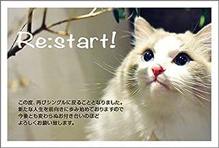 【官製 10枚】 離婚報告はがき SMSF-11-kan