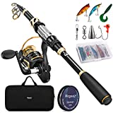 Magreel Telescopic Fishing Rod and Reel Combo Carbon Fiber Fishing Pole with Reel Combo Fishing Rod Kit for Saltwater Freshwater