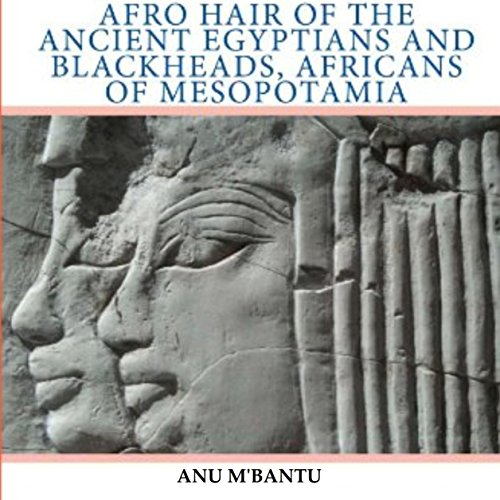 Afro Hair of the Ancient Egyptians and Blackheads, Africans of Mesopotamia audiobook cover art