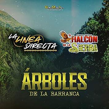 Arboles de La Barranca