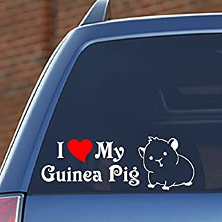 I Love My Guinea Pig – 8.8