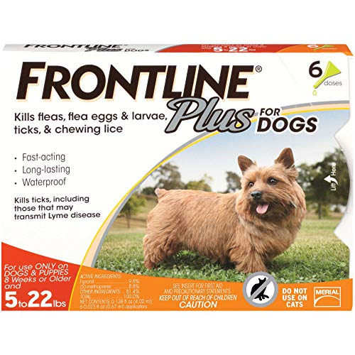 Amazon FRONTLINE Plus Flea and Tick Treatment for Dogs $33.70 (Small Dog, 5-22 Pounds, 6 Doses)