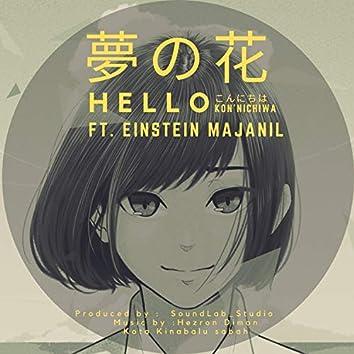 Hello (feat. Einstein Majanil)