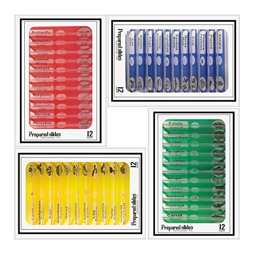 You&Lemon 48 Stück Optical Mikroskop Objektträger, 4 Farben Kinder Studenten Erleuchten Bildung Dauerpräparate, Stereomikroskop Folie Kit für Biologisch(Mischfarben)