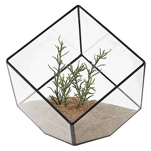Asvert Terrario de Cristal Casa de Flor de Vidrio Geométrica Cristal Adorno Hogareño para Florita Decoración Sobremesa para Casa Oficina Balcón Patio y Hotel