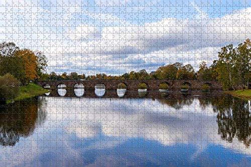 Manggu 1 000 bitar pussel sverige Karlstad Bridgepuzzle set för familj kartong lämplig för familjer, pedagogiska spel 38 x 26 cm (1 000 st)