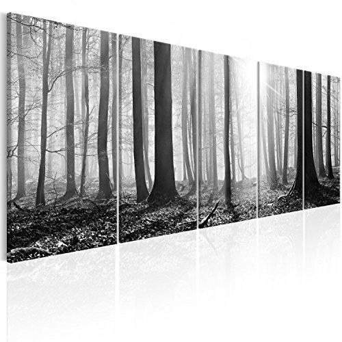 murando - Bilder Wald 200x80 cm Vlies Leinwandbild 5 TLG Kunstdruck modern Wandbilder XXL Wanddekoration Design Wand Bild - Waldlandschaft Natur Panorama Baum c-B-0285-b-m