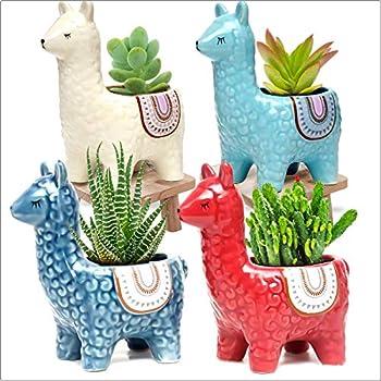 Best llama planter Reviews