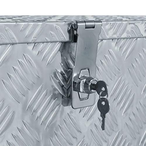 WENXIA Alubox | Allzweck-Transportkoffer | Deichselbox | Aufbewahrungsbox | mit Verriegelungssystem | Silber 80 × 30 × 35 cm - 6