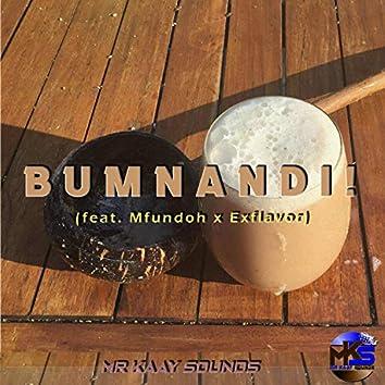 Bumnandi (feat. Mfundooh & ExFlavor)
