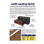 Swift Nesting Brick Box / Buff Breeding Bird House for Brick or Rendered Walls