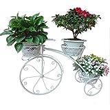 YOGANHJAT Estanteria para Macetas, Soporte para Macetas de Hierro con Diseño de Bicicleta para Decoración Exterior Interior Jardín Baño de 3 Pisos Metal Plant Stand,Blanco