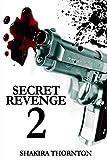 Secret Revenge 2