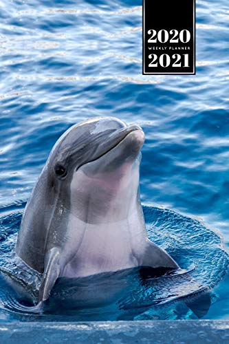 "Dolphin Beluga Whale Porpoise Dolphinfish Week Planner Weekly Organizer Calendar 2020 / 2021 - Look out of Water: Cute Wildlife Animal Pet Bullet Journal Notebook Diary in 6"" x 9"" Inch Pocket Size"