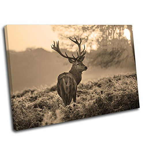 Canvas Culture - Stag Deer Landscape Canvas Art Print Box Framed Picture 28 Sepia 120 x 80cm
