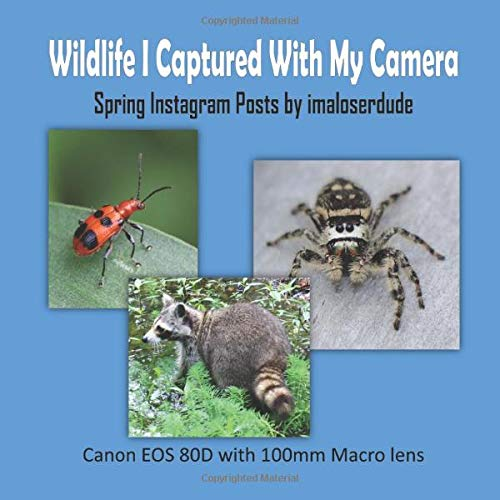 Price comparison product image Wildlife I Captured With My Camera: Spring Instagram Posts by Imaloserdude (Canon EOS 80D with 100mm Macro lens)