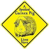 XREE A Spoiled Guinea Pig Lives Here - Placa de pared de hierro con diseño de cerdo de guinea con texto 'Lives here'