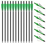 PEIBIAO 12 Pack Carbon Crossbow Bolts Crossbow Arrows 18/20/22 Inch and 3 Blades Hunting Broadheads 6 Pack,Hunting Archery Arrows with Moon Nocks and Removable Tips (22 inch Green)