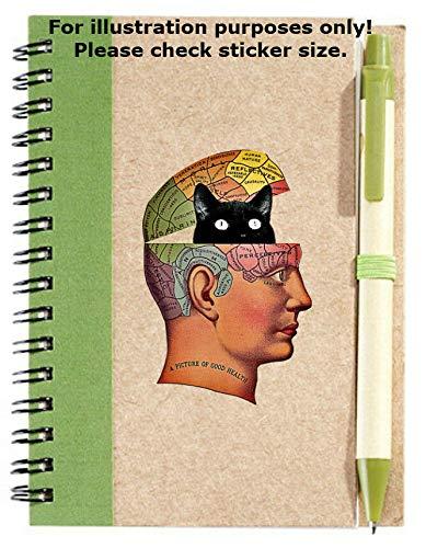 Sticker-Designs 10cm! Klebe-Folie Wetterfest Made-IN-Germany Kopf Gehirn LAT. Bezeichnung schwarz Katze No469...