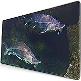 Gaming Alfombrillas de ratón extendidas con Base de Goma Antideslizante Pez Verde Atlántico Vivo Esturión en Acuario Beluga Blanca 30X80 cm