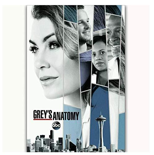 JCYMC Leinwanddruck Bild Grey's Anatomy 2017 Staffel 14 Ellen Art Poster Wanddekoration Geschenk Jz115Yc 40X60Cm Rahmenlos
