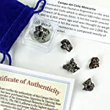 Dancing Bear Meteorite from Space, 5 pcs Campo del Cielo from Argentina/ Educational Card & Magnifying Box, Bran
