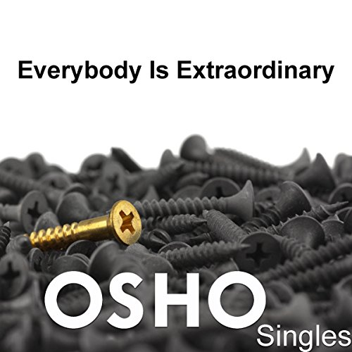 Everybody Is Extraordinary cover art