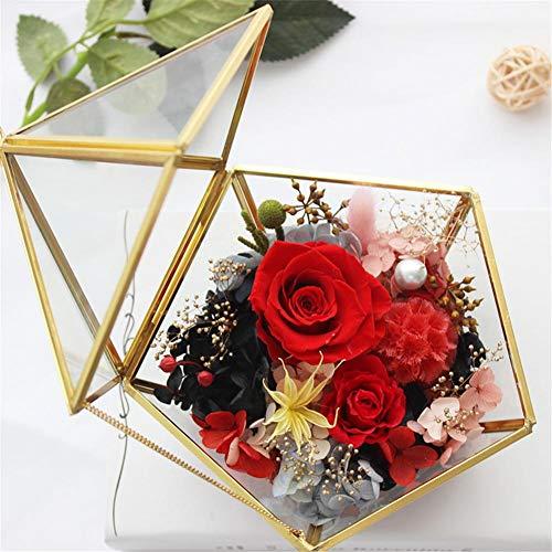 Geometrisches Glas Terrarium Box Schmuckschatulle Glas Sukkulente Pflanzgefäß Deko Multifunktional Glas Blumen Topf Tischplatten Pflanzer