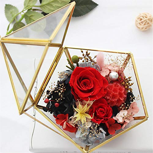 Geometrisch glas terrarium box juwelendoos glas vetplantenbak decoratie multifunctioneel glas bloemen pot tafelbladen planter