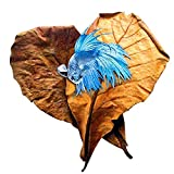 SunGrow Betta Leaves Replicate Habitat Naturale per Betta e Migliorare Il Benessere - tannino migliora l' immunità, prevengono la Crescita batterica