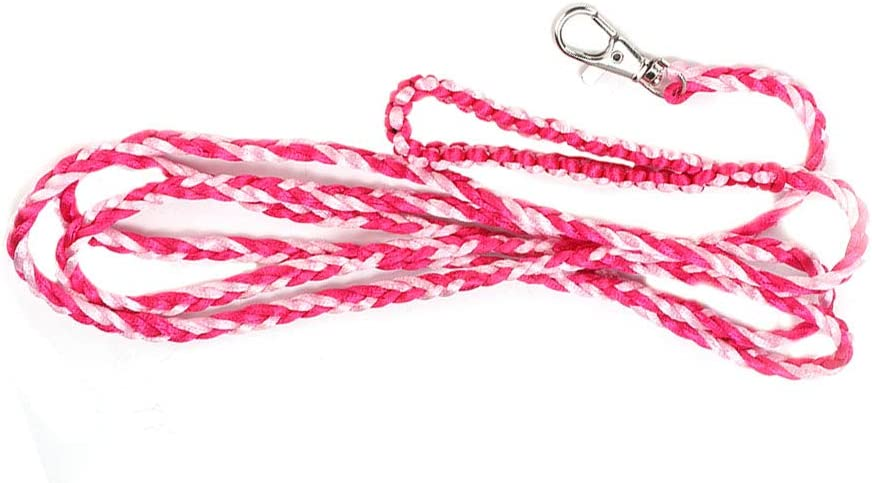 Max 81% Ranking TOP9 OFF Cerlingwee Hamster Leash Small Pet Comfortabl Bell Harness