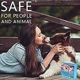 IMG-2 prozadalan collare antipulci cane antiparassitario