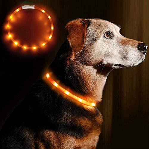Anicoll LED Leuchthalsband Hunde Halsband - USB wiederaufladbar - Längenverstellbarer Haustier Sicherheit Kragen für Hunde und Katzen- 3 Modus 12 Lichte (Orange)
