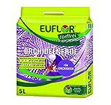 Euflor Orchideenerde 5 L Beutel professionelle Spezialerde für Orchideen, hochwertige Bestandteile, unterstützt die Blütenbildung