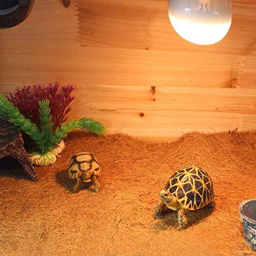 Nomo NC-07 60 x 40 cm Kokosfaser Drachen Substrat Reptilien Teppich Haustier Terrarium Liner Eidechse Käfig Matte für Eidechse Schlange Chamelon Schildkröte Bettwäsche Häschen Kaninchen