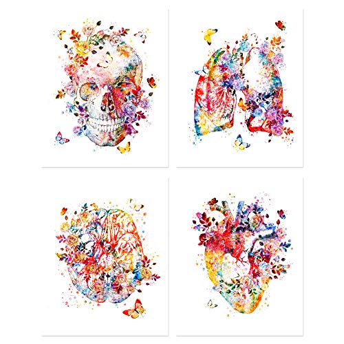 Flower Organs Wall Art - Set of Four Matte (8x10 inches) Floral Anatomy Posters - Lungs - Skull - Brain - Heart - Retro Wall Decor for Doctors Office, Clinic, Med Student Dorm - Nurses, Physicians | Watercolor